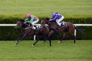 Sulkyland, Raceclubs, Digiturf et autres : Voici les meilleurs jeux de courses de chevaux